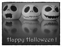 lily_halloween-photo1.jpg