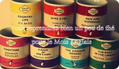 roman historique,philippa boston,editions didier,the fortunes of john de courcy,angleterre élisabethaine,tudors,oxford,mois anglais,mois anglais 2015