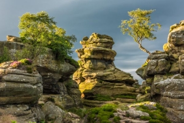 Brimham-Rocks-0234.jpg